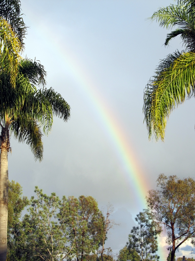 Carmel Valley Rainbow