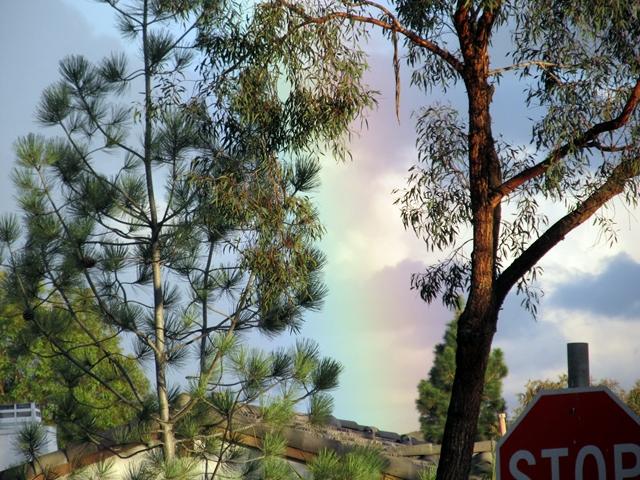 2013_0106_rainbow_close